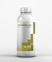 Canaplus